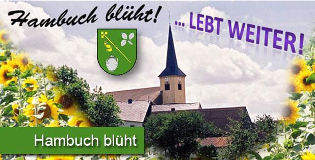 Hambuch Blüht