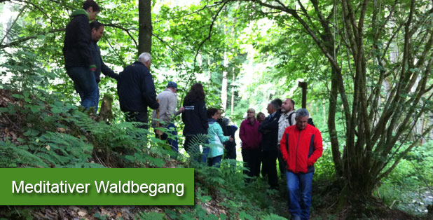 Meditativer Waldbegang